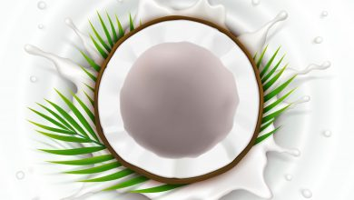 Photo of Is Coconut Oil Beneficial For Your Skin?