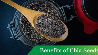 Photo of Benefits of Chia Seeds: Everything You Need to know!
