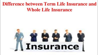 Photo of Which is better for you: term life insurance or whole life insurance?