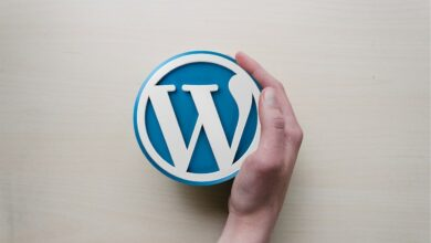 Photo of How To Check A Website Is Built With WordPress or Not?