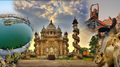 Photo of Gujarat – Get To Know About This Most Developed State