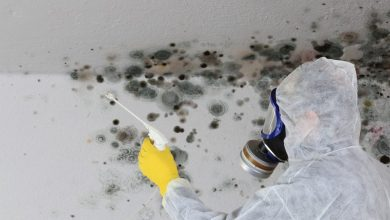 Photo of Mold Removal Aurora co