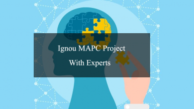 Photo of Writing a Top Ignou MAPC Project With Experts