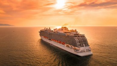 Photo of Wanna Cruising With Kids? Look At The Best cruises lines.