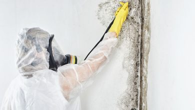 Photo of Mold Testing – Symptoms, Problems & Prevention